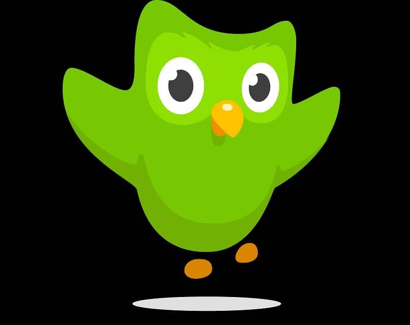 Como usar e aprender inglês gratuitamente com o Duolingo