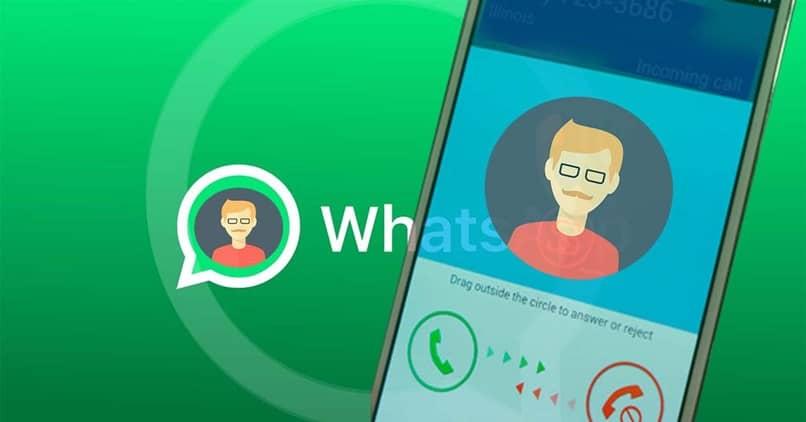 perfil do usuário green whatsapp
